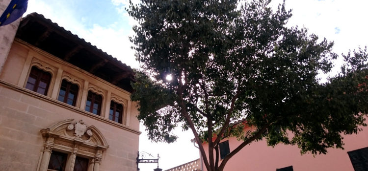 Ferienhausbetrug auf Mallorca